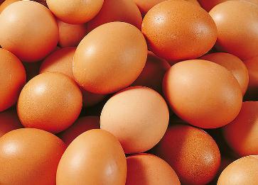 鸡蛋(土鸡)