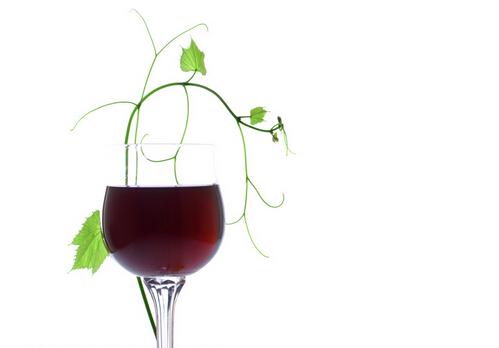 适度饮用葡萄酒可以预防慢性肾病