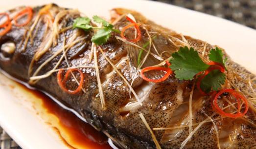 毛峰石斑鱼的做法